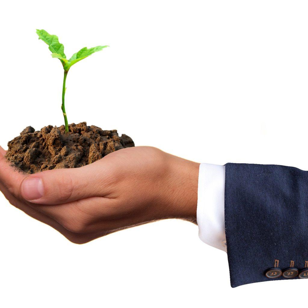Dom Biral et le Développement durable