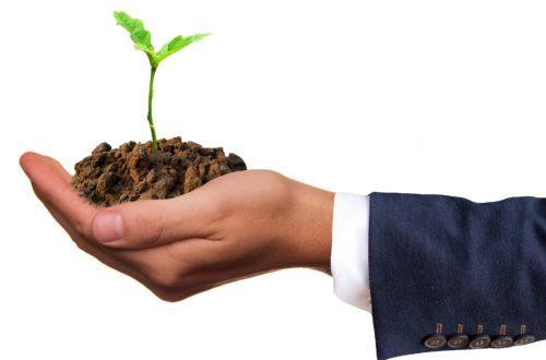 Développement Durable : Qu'est-ce Qu'on Y Gagne ?