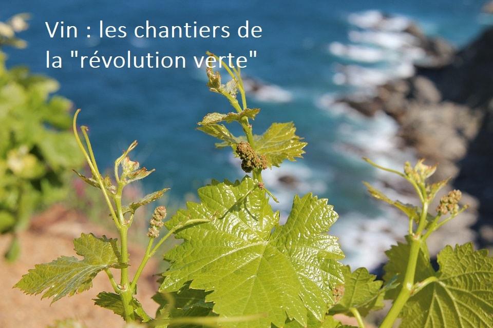 Vin : Les Chantiers De La  «révolution Verte»