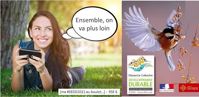 RSE Agro Occitanie : Un Comité De Pilotage Actif